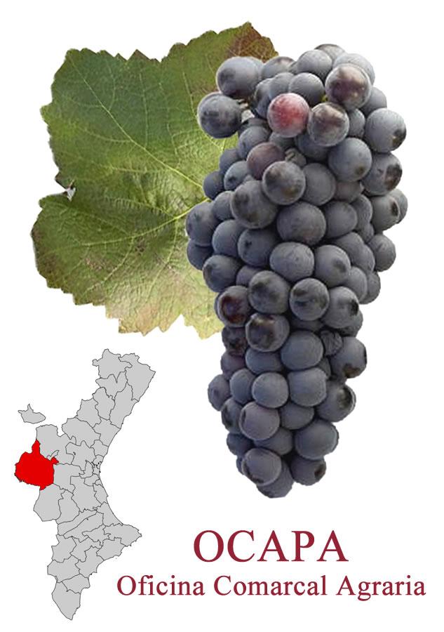 Liv fiesta de la vendimia fiesta de la vendimia requena for Oficina comarcal agraria