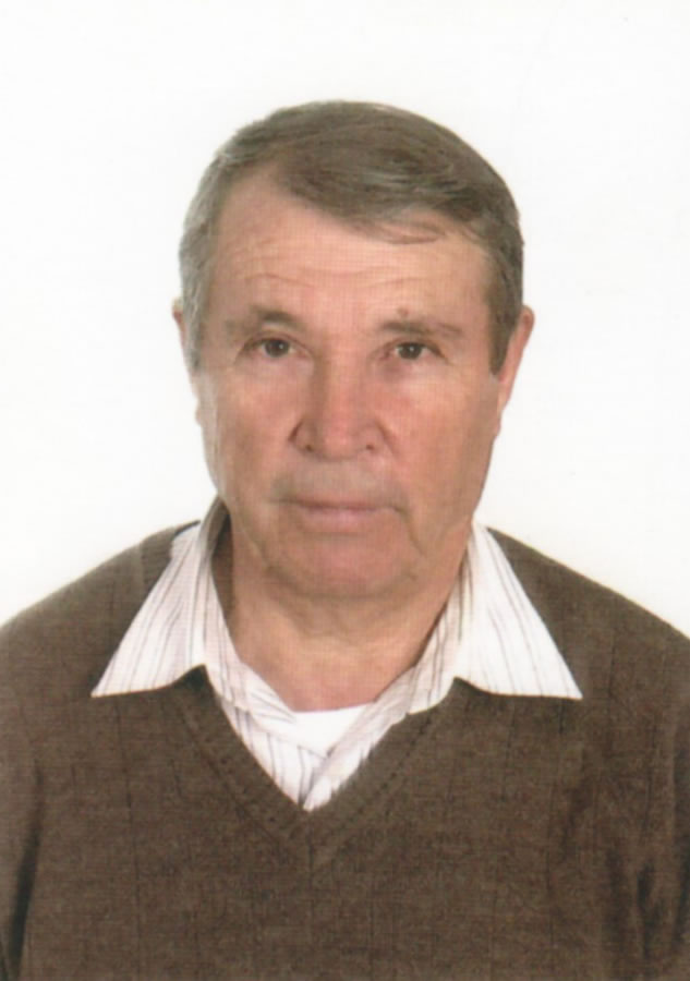 Rafael Valle Alcocer